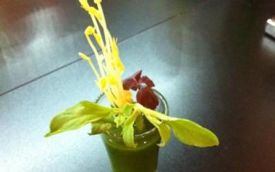 Pesto de roquette / basilic